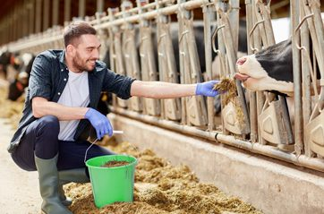 agriculture industry, farming, people and animal husbandry conce